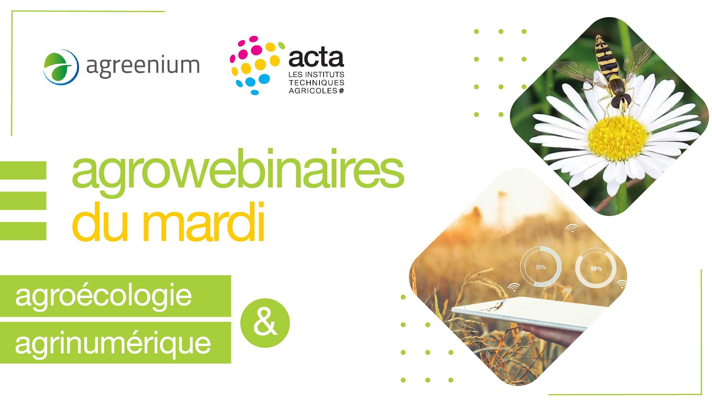Programme des Webinaires en partenariat avec ACTA - Saison 3