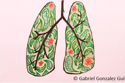 gabriel_gonzalez_guirola_-_one_health - INRAE - DicoAE