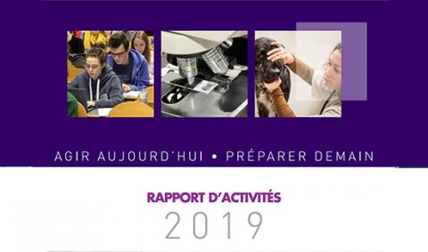 rapport-activité-2019