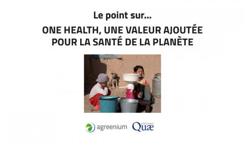dossier de synthèse one health