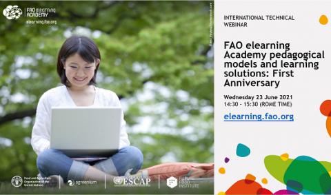 FAO webinar pedagogy & learning
