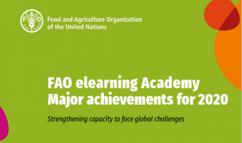 fao_elerning_academy_achievements2020
