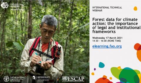 FAO-webinar-forest-data