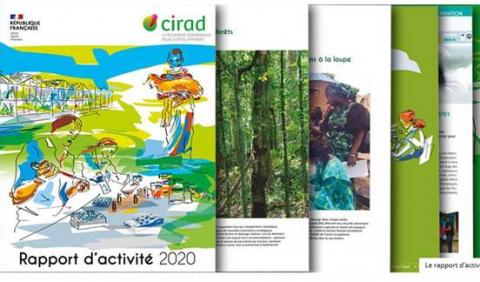 rapport_activites_2020_cirad