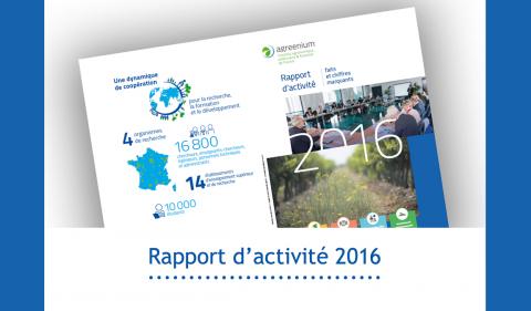 rapport activite 2016