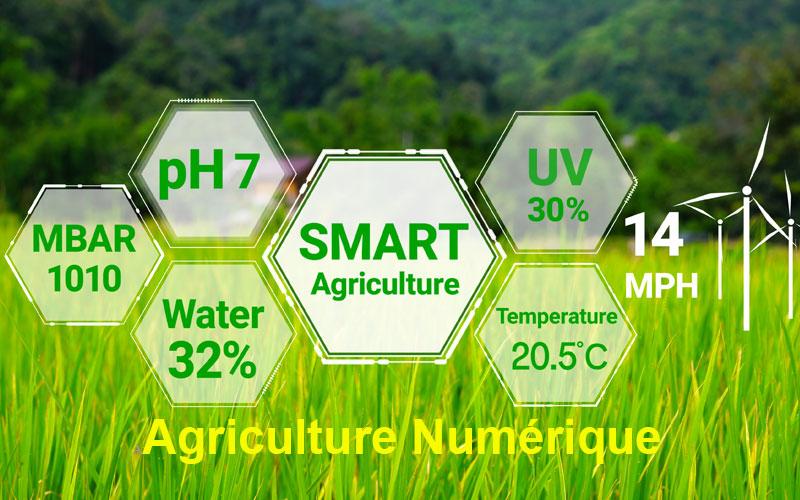 Webinaires sur la thématique Agriculture numérique